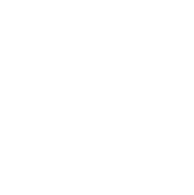 Live video stream for everyone at home.